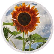 Perfection In The Eye Of The Beholder Round Beach Towel
