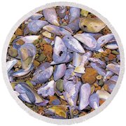 Periwinkles Muscles And Clams Round Beach Towel by Elizabeth Dow