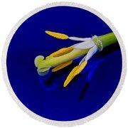 Petal-less Flower On Bright Blue Round Beach Towel