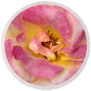 Petalsoft Perfection Round Beach Towel
