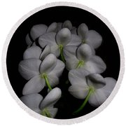 Phalaenopsis Backs Round Beach Towel