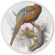 Phasianus Elegans Elegant Pheasant Round Beach Towel by Daniel Girard Elliot