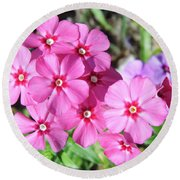 Round Beach Towel featuring the photograph Phlox Beside The Road by D Hackett