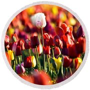 Round Beach Towel featuring the photograph Pick Me by Ronda Kimbrow