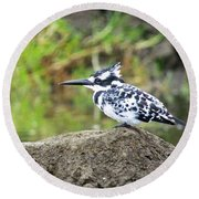 Pied Kingfisher Round Beach Towel