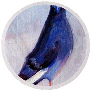 Pigeon Bird Portrait Painting Round Beach Towel