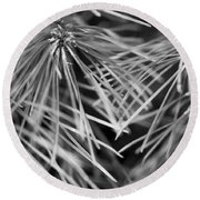 Pine Needle Abstract Round Beach Towel by Susan Stone