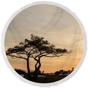 Pine Tree Portrait Round Beach Towel