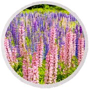 Pink And Purlpe Round Beach Towel