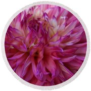 Round Beach Towel featuring the photograph Pink And White Dahlia  by Denyse Duhaime