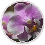 Pink And White Orchid Round Beach Towel