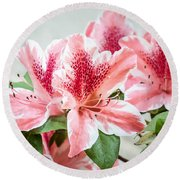Round Beach Towel featuring the photograph Pink Azaleas by Todd Blanchard