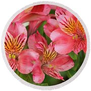 Round Beach Towel featuring the photograph Pink Beauty by E Faithe Lester