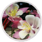 Round Beach Towel featuring the photograph Pink Columbine by Caryl J Bohn