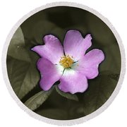 Prairie Rose Round Beach Towel