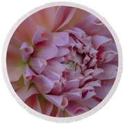 Round Beach Towel featuring the photograph Pink Dahlia by Jacqui Boonstra