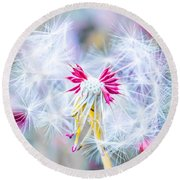 Magic In Pink Round Beach Towel