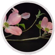 Round Beach Towel featuring the photograph Pink Dogwood Branch  by Jeannie Rhode