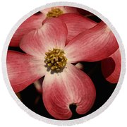 Round Beach Towel featuring the photograph Pink Dogwood by James C Thomas