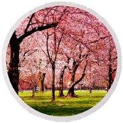 Pink Forest Round Beach Towel by Patti Whitten