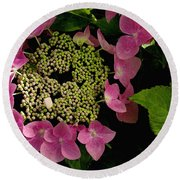 Pink Hydrangea Round Beach Towel by James C Thomas