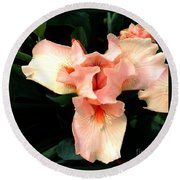 Round Beach Towel featuring the photograph Pink Iris by The Art of Alice Terrill