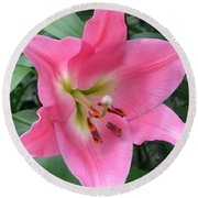 Round Beach Towel featuring the photograph Pink Lily by Jeannie Rhode