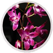 Pink Orchid Round Beach Towel by Eva Csilla Horvath
