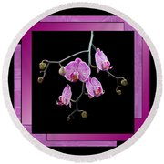 Round Beach Towel featuring the photograph Framed Orchid Spray by Patti Deters
