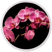 Pink Orchids 3 Round Beach Towel