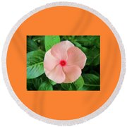 Pink Perfection Round Beach Towel by Deborah Lacoste