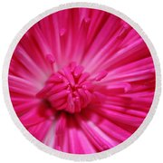 Pink Petals Round Beach Towel by Inspired Arts