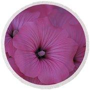 Pink Petunia Round Beach Towel