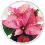 Pink Poinsettia Round Beach Towel by Louise Kumpf