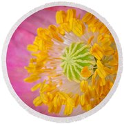 Pink Poppy Too Squared Round Beach Towel