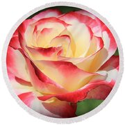 Round Beach Towel featuring the photograph Pink Rose by Athala Carole Bruckner