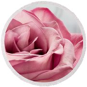 Pink Rose Macro Round Beach Towel