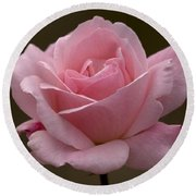 Round Beach Towel featuring the photograph Pink Rose by Meg Rousher
