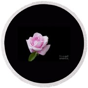 Pink Rose On Black Round Beach Towel by Victoria Harrington