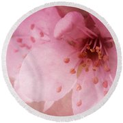 Round Beach Towel featuring the photograph Pink Spring Blossom by Ann Lauwers