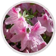 Round Beach Towel featuring the photograph Pink Star Azaleas In Full Bloom by Connie Fox