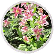 Pink Stargazer Lilies-greeting Card Round Beach Towel