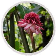 Pink Torch Ginger Round Beach Towel