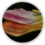 Pink Tulip Petal Reflected On Black Round Beach Towel