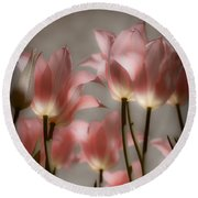 Round Beach Towel featuring the photograph Pink Tulips Glow by Michelle Joseph-Long