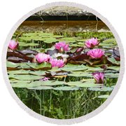 Pink Water Lilies Round Beach Towel