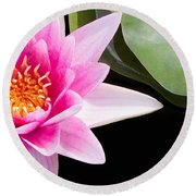 Pink Water Lily And Pad Round Beach Towel