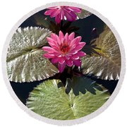 Pink Water Lily IIi Round Beach Towel