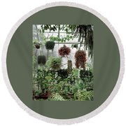 Plants Hanging In A Greenhouse Round Beach Towel
