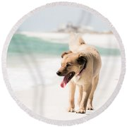 Play Buddy Round Beach Towel by Shelby  Young
